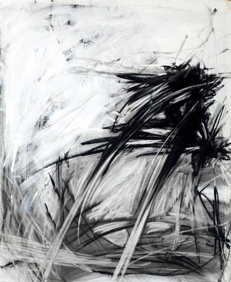 MG_7751tekening-groot-wild-zandlijn-tekening